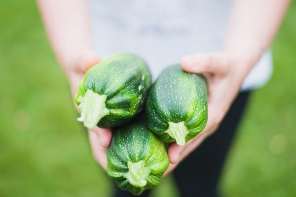 5 Alasan Kenapa Hobi Berkebun Bisa Bermanfaat Bagi Kehidupanmu